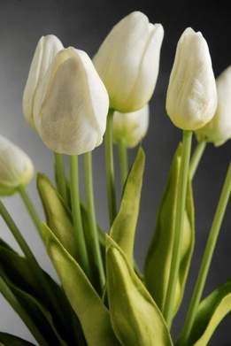Natural Touch White Tulip Bouquet