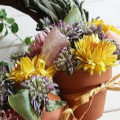 All about working with dried flowers
