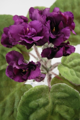 Artificial African Violet Plants Dark Purple
