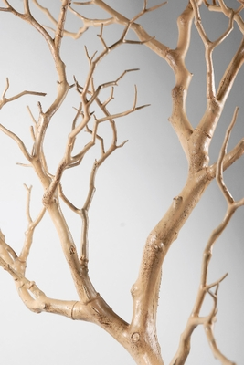 Artificial and Natural Branches Trees