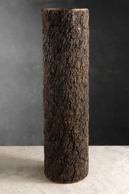 "Bark Covered Glass Vases 5.5"" x 20"""