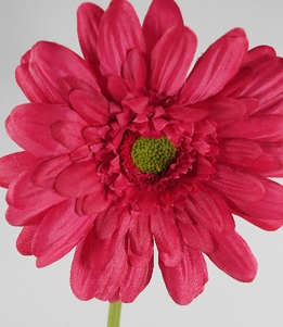 Beauty Red Silk Gerbera Daisies (12 flowers)