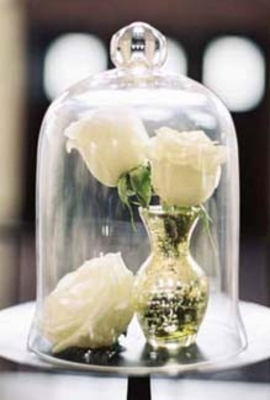 Bell Jars, Cloches