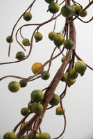 Berry Garlands Green Berries 6 Feet