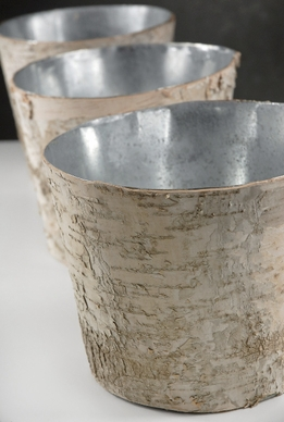 Birch Bark Centerpiece Vase 7in