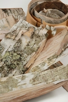 Birch Bark Shavings 8 ounce pkg