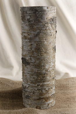 Birch Bark Cyliner Vase 13.5in