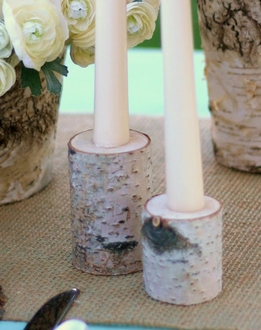 Birch Branch Taper Candle Holders Set of Two
