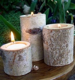 Birch Branch Tealight Holders (Set of 3)