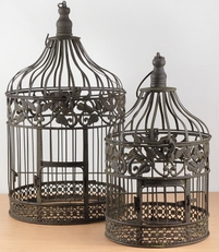 Bird Cages with Ivy and Eagle Detailing (Set of 2)