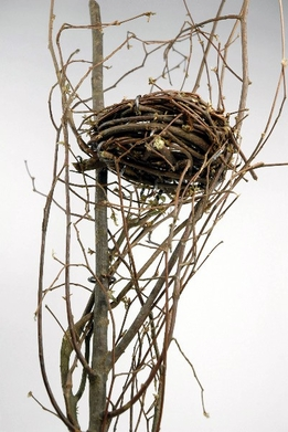 Bird Nest Branch 24""