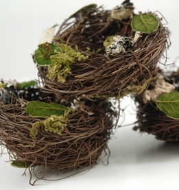 Birdnests 3 x3 Angel Vine Leaves, Moss & Lichen