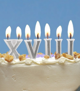 "Birthday & Anniversary Candles- 1"" Silver Roman Numeral Candles"