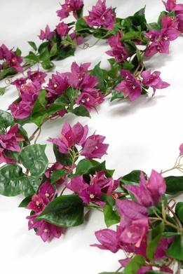 Bougainvillea Garland in Fuchsia 6'