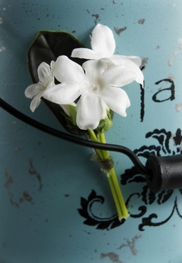 Boutonnieres Silk Stephanotis with Pin