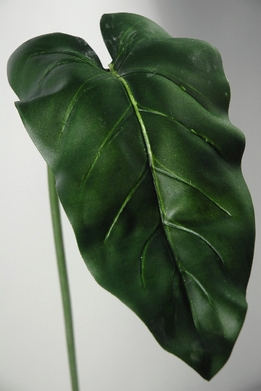 Calla Lily Flower Leaves 39""