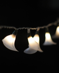 Calla Lily Flower String Lights | White