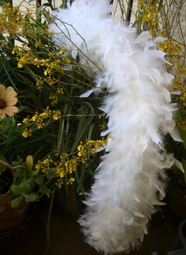 Chandelle Feather Boas White Feathers 80 gram