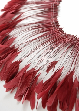 "Coque Feathers Red Stripped Coque Feathers 6-8"" tall 12"" Strung Length"