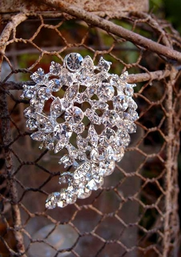 Crystal Brooch 2in