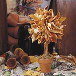 DIY Make a Dried Orange Peel Topiary Tree