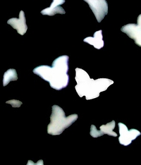 Eco Friendly Confetti Butterflies (pkg 350 pieces)