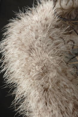 Feather Boas Brown & White Chinchilla Marabou 25 gram
