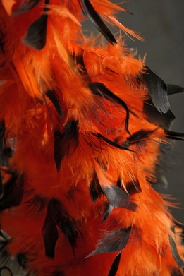 Feather Boas Chandelle Orange Feathers Black Tips 80 gram