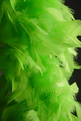 "Feather Boas Thick Lime Green Chandelle & Coque Feather (9"" width) 80 gram"