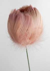 Feather Flowers on Wire Stem -- Apricot Taupe