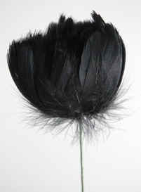 Feather Flowers on Wire Stem Black