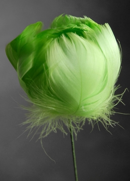 Feather Flowers on Wire Stem Lime Green