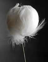 Feather Flowers on Wire Stem White