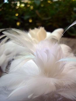 Feather Flowers White Goose & Marabou Ostrich