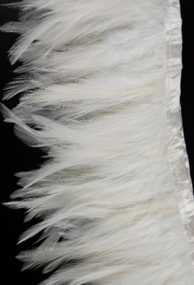 Feather Trims