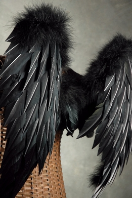 Feather Wings 33x22 Black Feathers & Marabou Wings