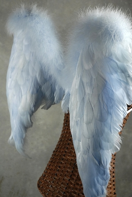 Feather Wings Blue 28 x 23 Marabou & Goose