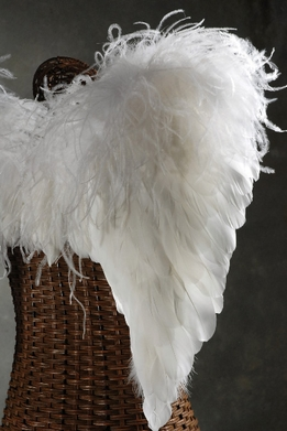 Feather Wings White Ostrich & Goose Feathers