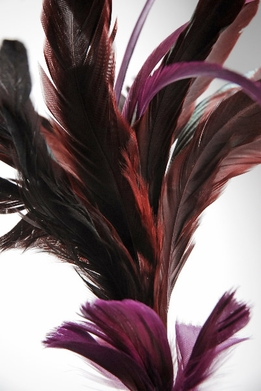 "Feathers Burgundy Red on 26"" wires"