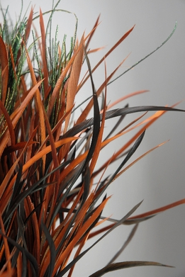 Feathers Orange, Brown & Green Feathers on wire stem (6 stems)