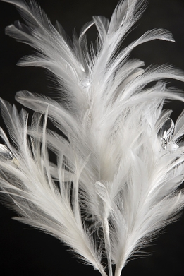 Feathers White with Crystals on Wire 21 in.
