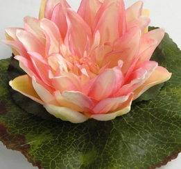 "Floating Flowers 6"" Pink Water Lilies"