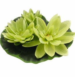 Floating Lily Flowers Large Green 9""