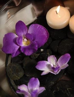 Floating Purple Orchids