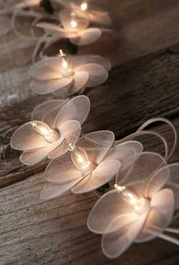 Flower String Lights�White 10ft