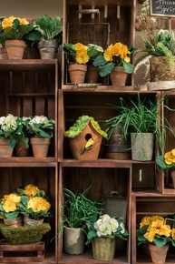 Garden & Outdoor Decor - Click to enlarge
