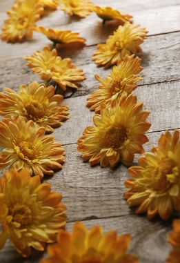 Gerbera Yellow Daisies Garlands (18 flowers) 6 feet