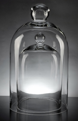 Glass Bell Jar Domes (Set of 2)