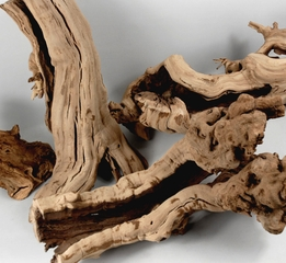 "Grapewood Branches Natural (12-14"") Hollow & Sandblasted"