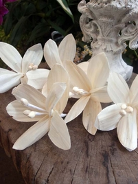 Paper Lily Flowers 5in (Pack of 5)
